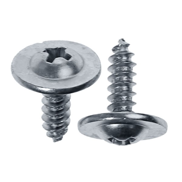 65-66 WASHER NOZZLE SCREWS - 2 PCS